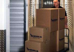 Box Guarda Tudo SF Estoque de Mercadoria