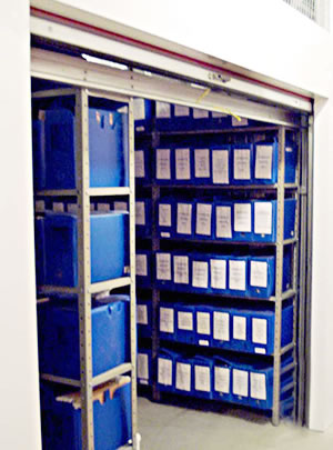 Box Guarda Tudo SF Guarda Documentos
