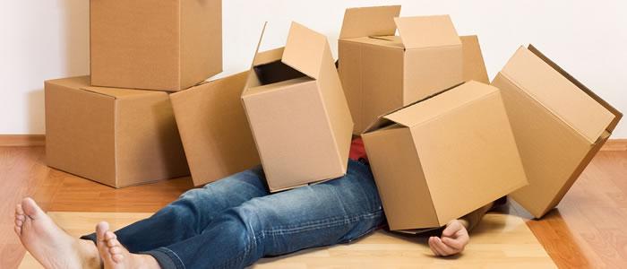 Dicas de estocagem e armazenamento - Box Guarda Tudo SF